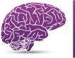 Neurology Consultants
